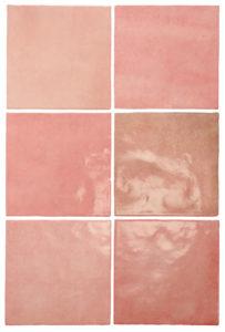 Artisan Rose Mallow 13,2x13,2