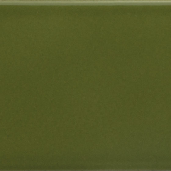 Arrow Green Kelp